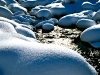 Bach - Winter