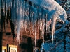 Eiszapfen - Winter