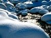 winter_bach