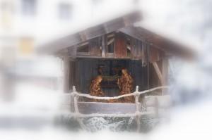"""""""Weihnachtsgrippe Wald im Pitztal"""""""