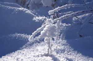 """""""Winter im Pitztal"""""""