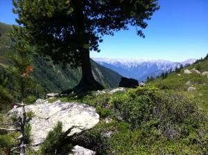 """Natur und Wanderhotel Bergland"""